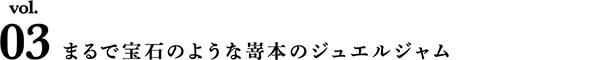 【タイトル】Vol.2まるで宝石のような嵜本のジュエルジャム